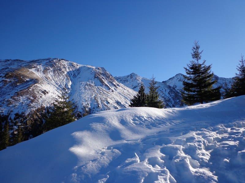Montanha fria fotografia de stock royalty free