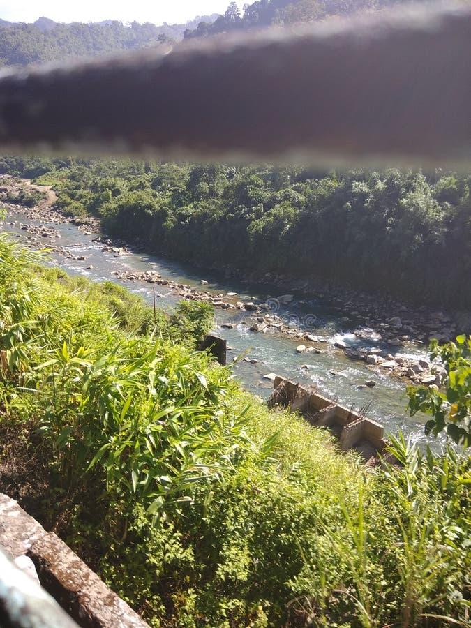 Montanha indiana do rio da floresta da natureza foto de stock