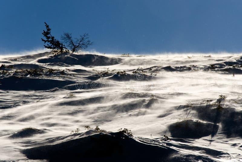Montanha invernal fotos de stock