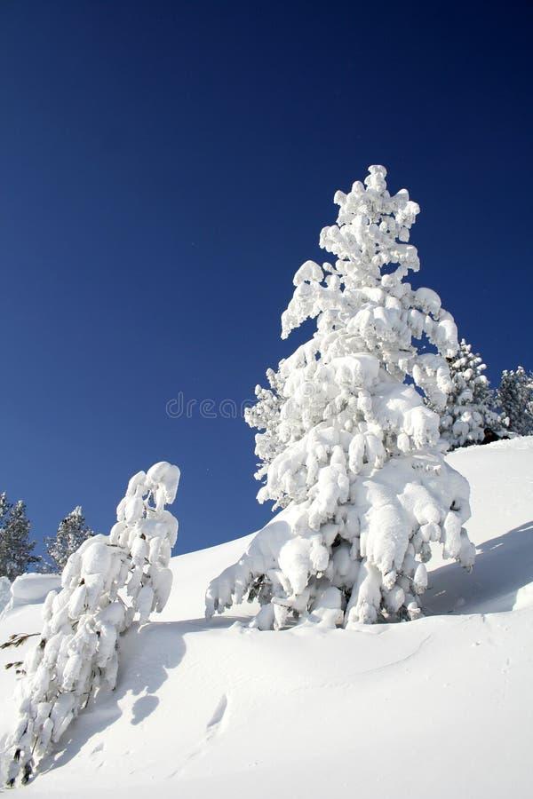 Montanha, inverno, neve e céu fotos de stock