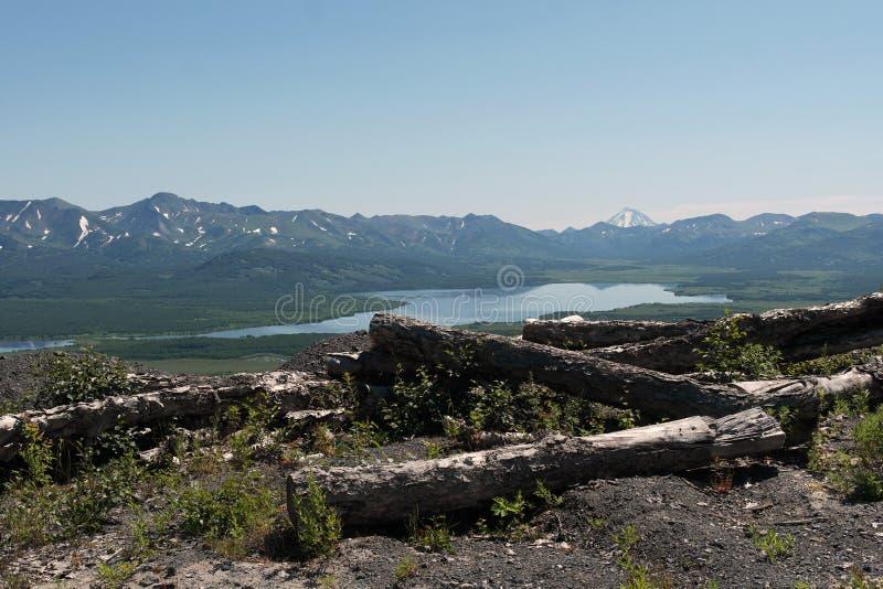 Montanha Lake As árvores ruídas fotografia de stock royalty free