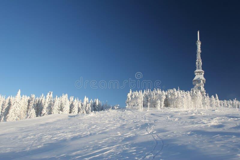 Montanha na neve imagem de stock
