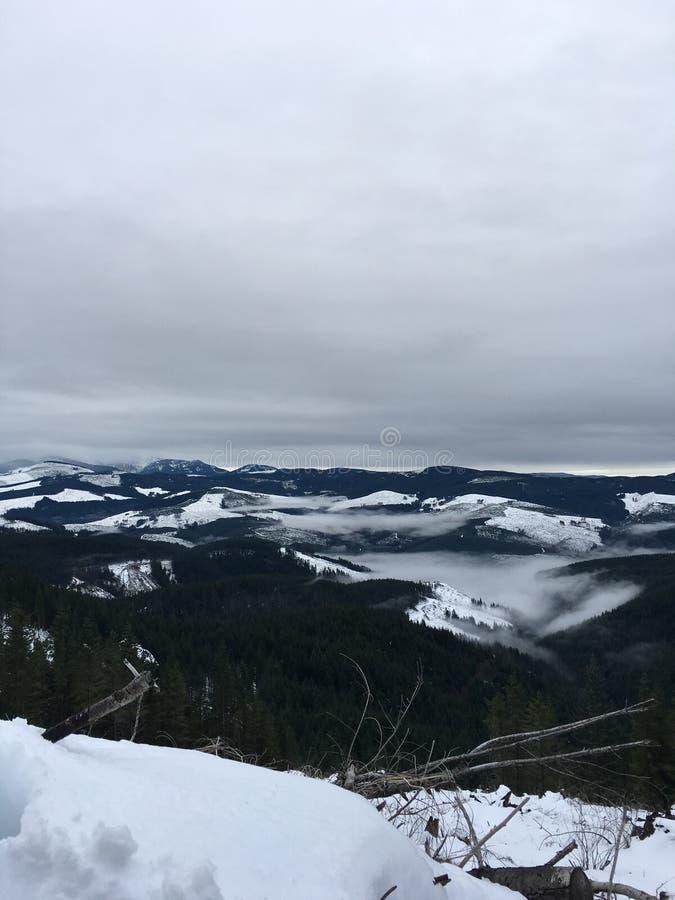 Montanha noroeste pacífica com fotografia de stock royalty free