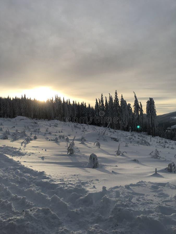 Montanha noroeste pacífica com imagem de stock royalty free
