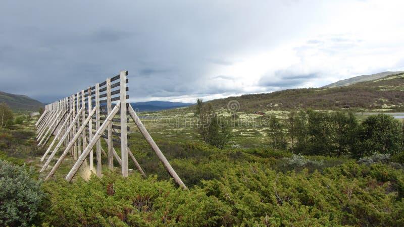 Montanha Noruega fotos de stock royalty free