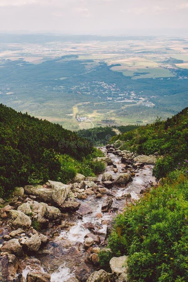 Montanha, pico, Tatras alto, verão, Eslováquia fotografia de stock