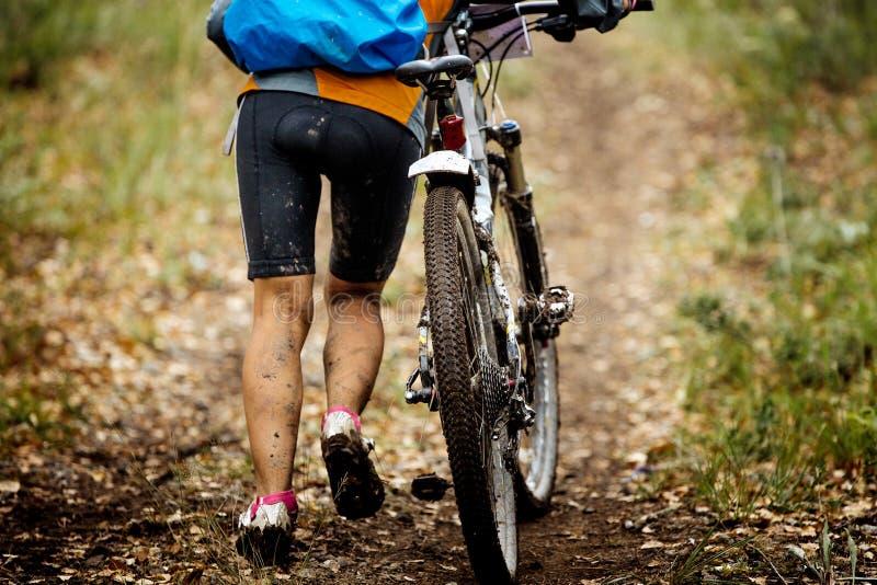 Montanha que biking na floresta do outono foto de stock royalty free