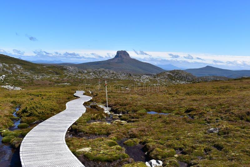 Montanha que Trekking, Tasmânia - Austrália do berço fotografia de stock