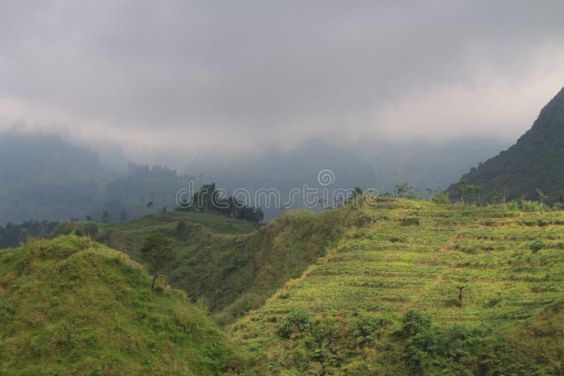 A montanha verde imagem de stock