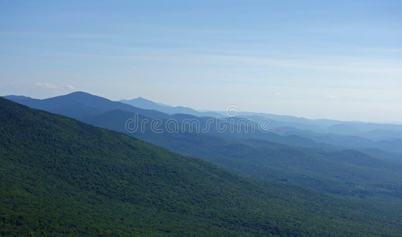 Montanha verde Forest From Mount Mansfield nacional fotos de stock