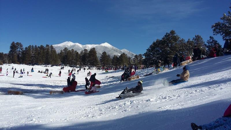 Montanha Wing Snow Play Area, mastro, o Arizona foto de stock royalty free
