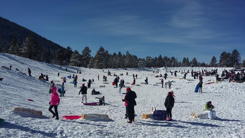 Montanha Wing Snow Play Area, mastro, o Arizona imagens de stock