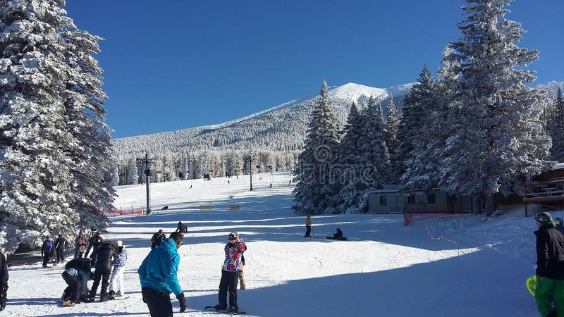 Montanha Wing Snow Play Area, mastro, o Arizona foto de stock