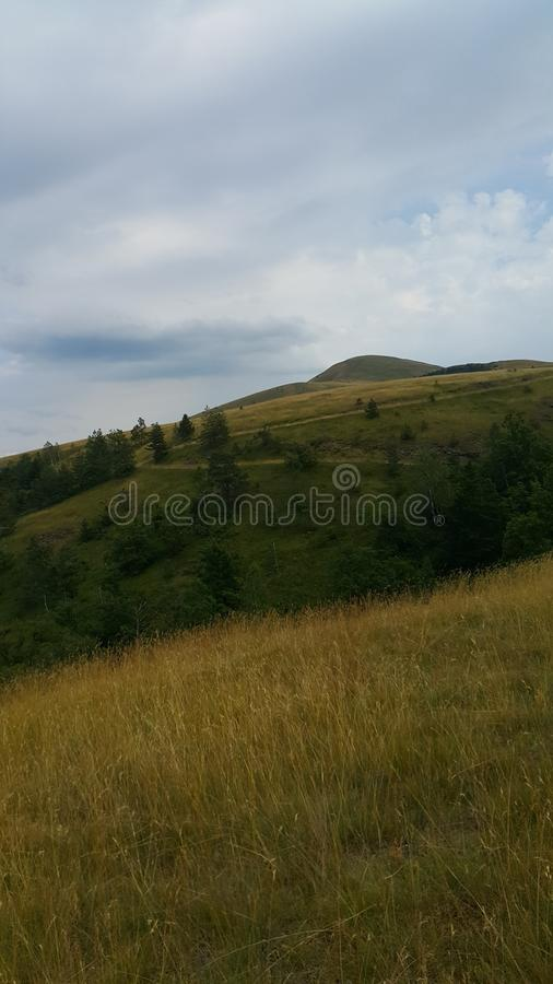 Montanha Zlatibor fotografia de stock