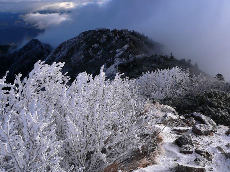 Montanhas Adiantadas Do Inverno Imagens de Stock Royalty Free
