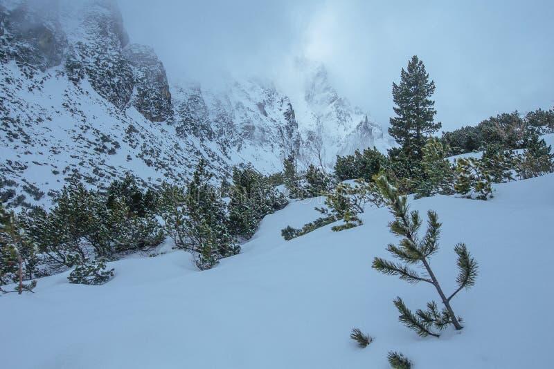 Montanhas altas de Tatras no tempo de inverno fotos de stock