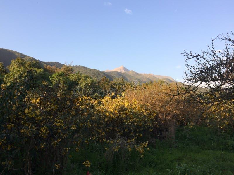 Montanhas andinas fotos de stock royalty free
