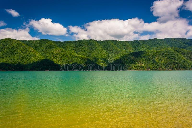 Montanhas ao longo da costa do lago Watauga, no nacional Cherokee fotos de stock royalty free