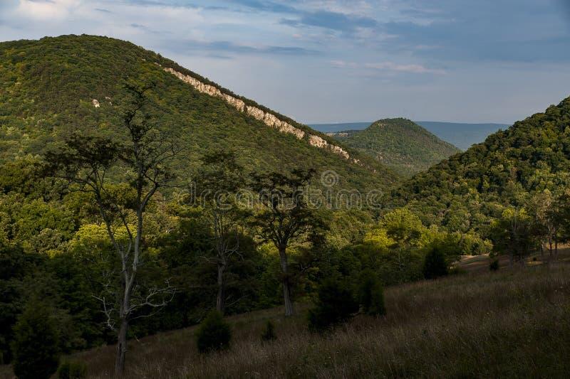 Montanhas apalaches - floresta nacional de Monongahela - West Virginia imagem de stock