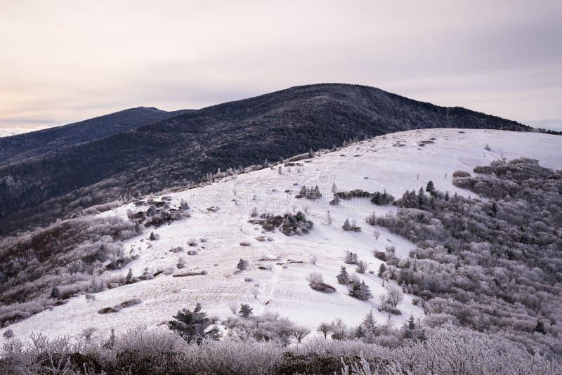 Montanhas apalaches no inverno 2 fotografia de stock royalty free