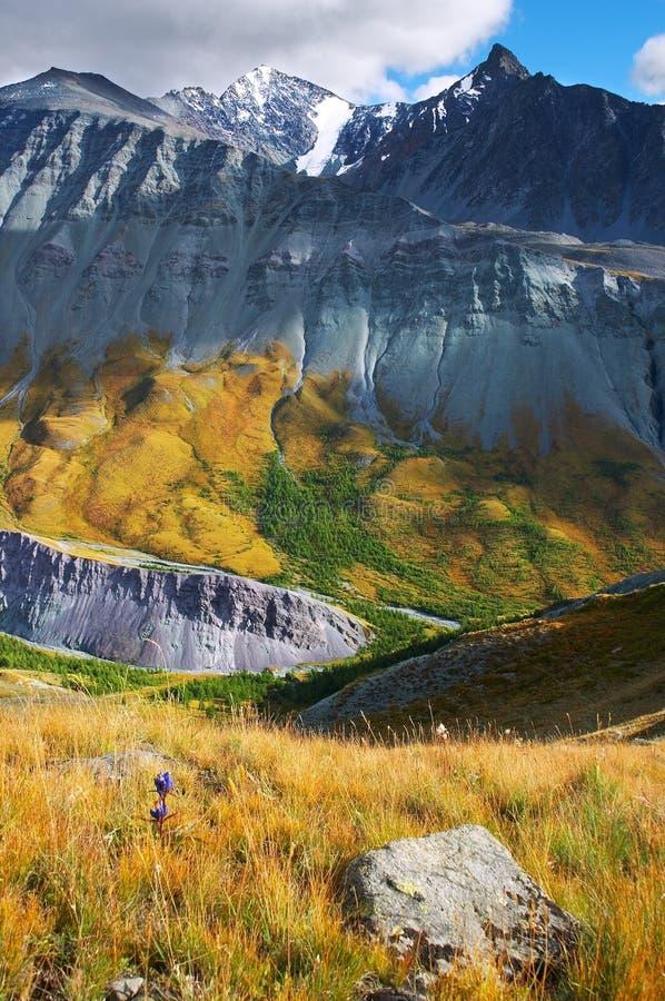 Montanhas bonitas. Altay fotografia de stock royalty free