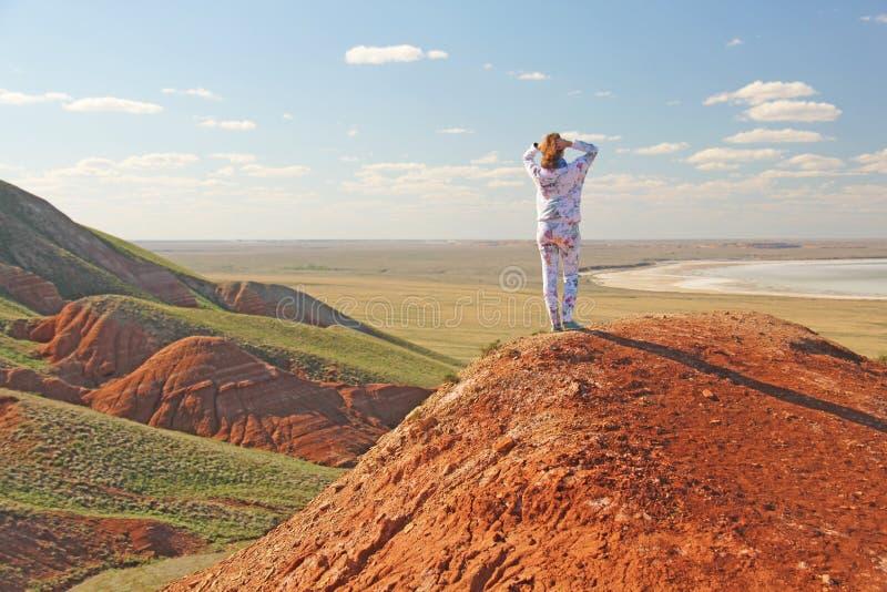 Montanhas bonitas da argila vermelha contra o céu azul Paisagem do deserto Espaço para o texto paisagem dramática da argila fotos de stock