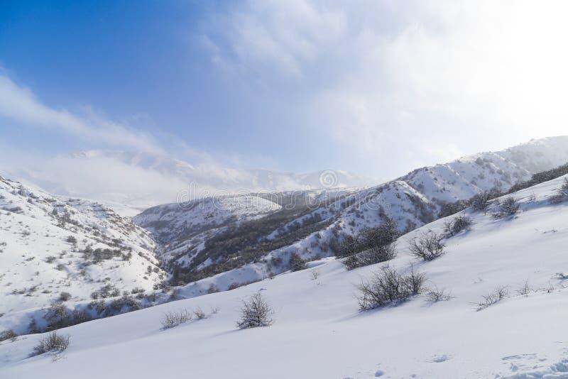 Montanhas bonitas de Tien Shan na neve no inverno foto de stock