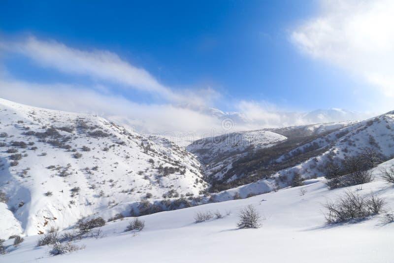 Montanhas bonitas de Tien Shan na neve no inverno imagem de stock