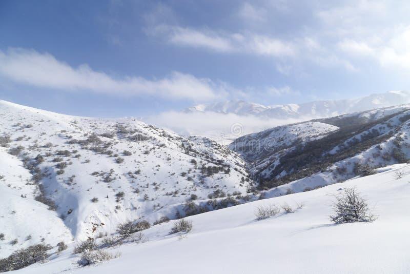 Montanhas bonitas de Tien Shan na neve no inverno foto de stock royalty free