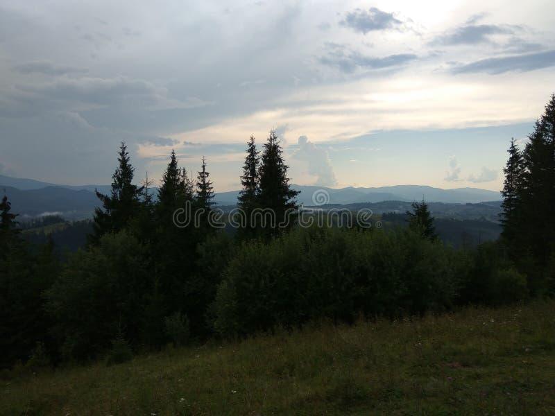 Montanhas Carpathian imagem de stock