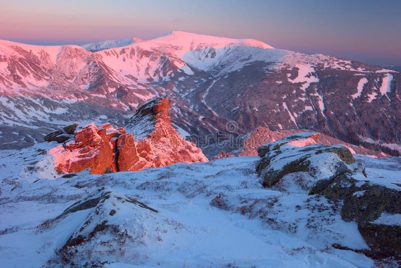 Montanhas Carpathian do inverno imagem de stock royalty free