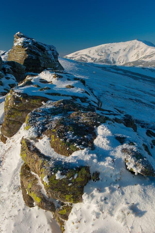 Montanhas Carpathian do inverno fotografia de stock