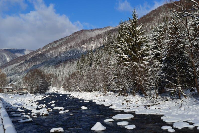 Montanhas Carpathian nevados bonitas e rio altivo no inverno fotos de stock