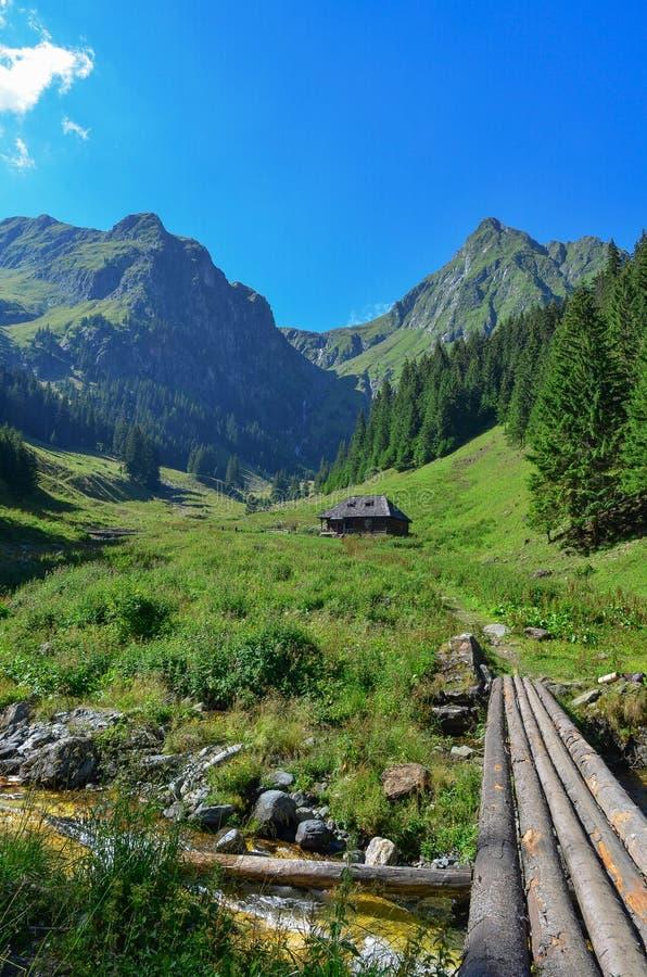 Montanhas Carpathian romenas fotos de stock