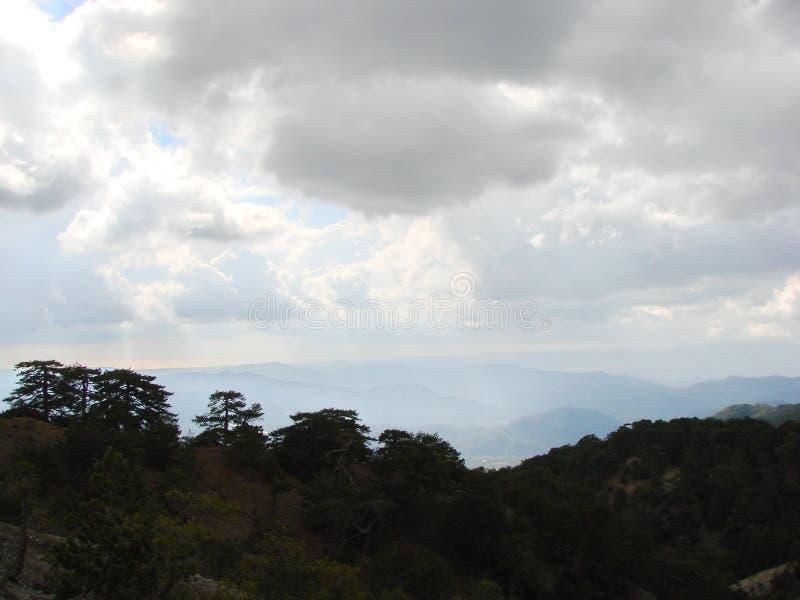 Montanhas Chipre de Troodos Paisagens da floresta e a beleza de rios da montanha em uma altura de 1400 m acima do n?vel do mar fotos de stock