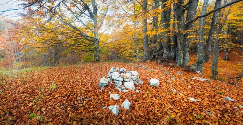 Montanhas crimeanas imagens de stock