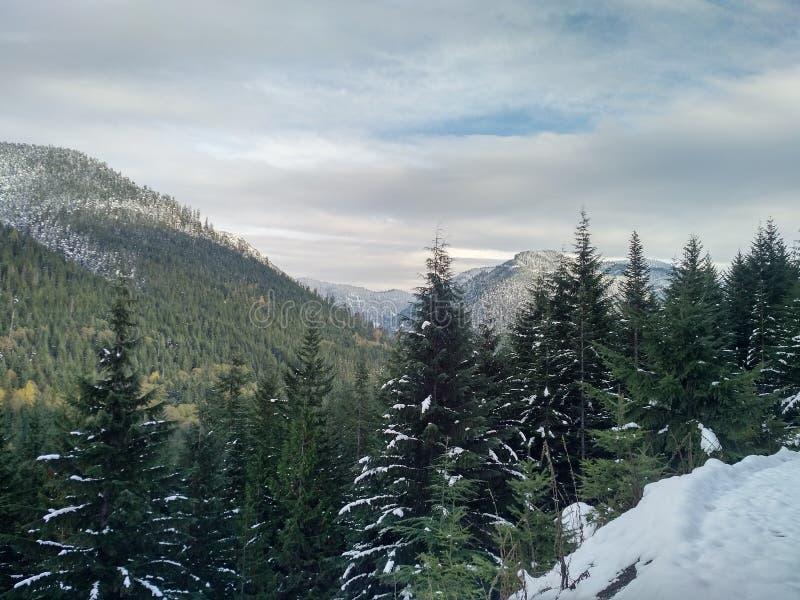 Montanhas da cascata no inverno adiantado fotografia de stock