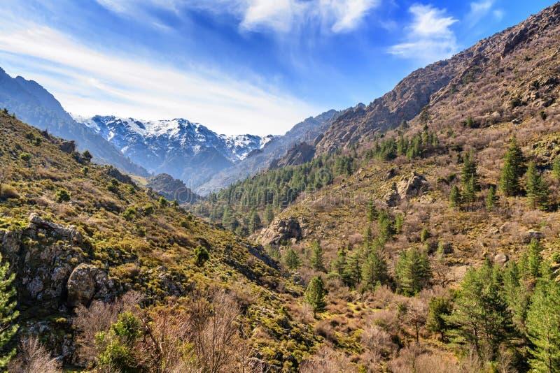Montanhas da neve do vale de Asco, Córsega fotografia de stock royalty free
