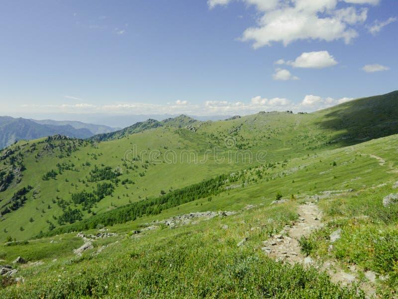 Montanhas de Altai foto de stock