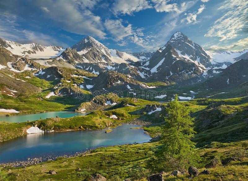 Montanhas de Altai fotos de stock royalty free