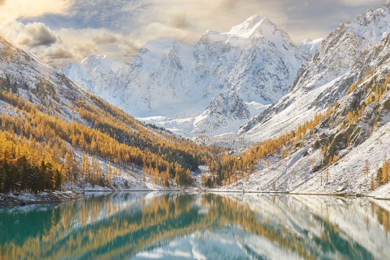 Montanhas de Altai, R?ssia, Sib?ria imagem de stock