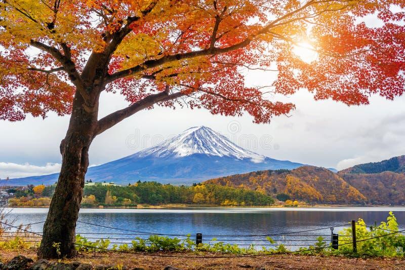 Montanhas de Autumn Season e de Fuji no lago Kawaguchiko, Japão foto de stock