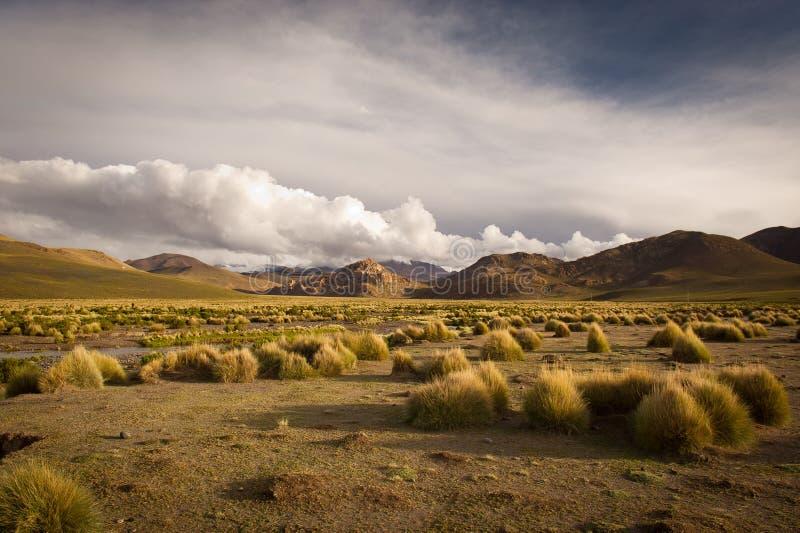 Montanhas de Bolívia, altiplano foto de stock royalty free