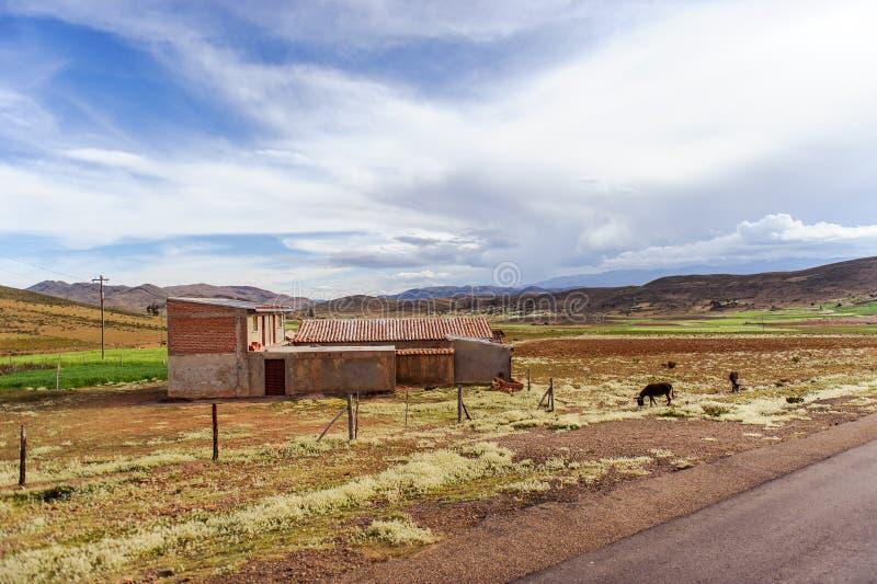 Montanhas de Bolívia, altiplano fotografia de stock royalty free