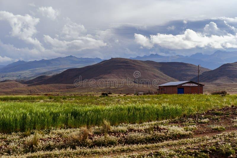 Montanhas de Bolívia, altiplano fotos de stock