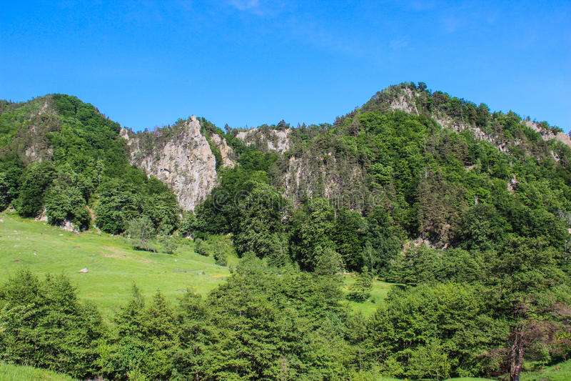 Montanhas de Buzau fotografia de stock royalty free