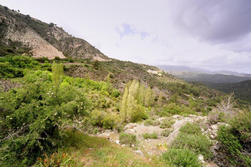 Montanhas de Chipre fotos de stock
