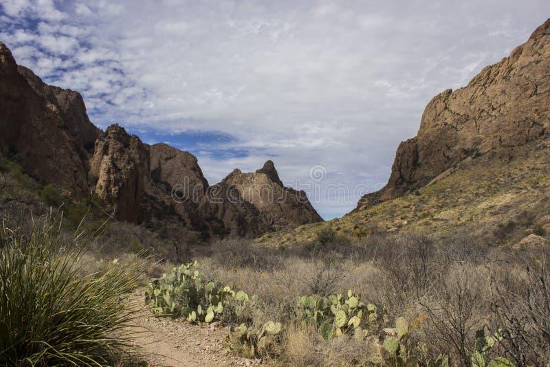 Montanhas de Chisos no parque nacional de curvatura grande fotos de stock royalty free