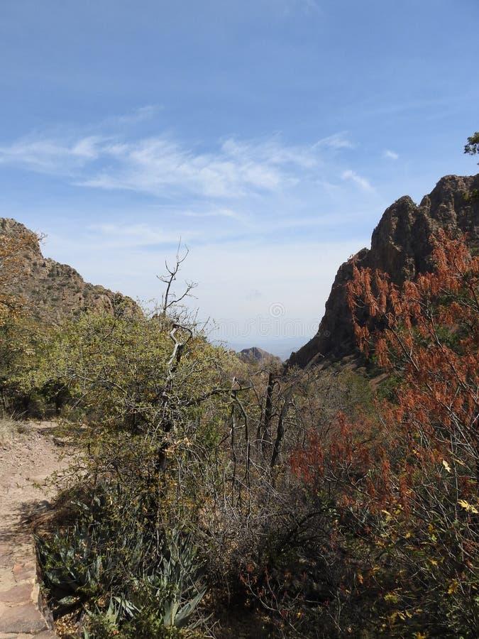 Montanhas de Chisos, parque nacional de curvatura grande imagens de stock royalty free