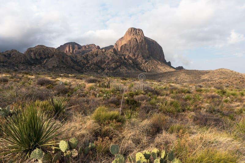 Montanhas de Chisos, parque nacional Texas de curvatura grande fotografia de stock